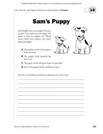 Sam's Puppy - National Science Teachers Association