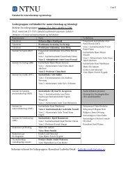 Europe 2020 - Fakultet for naturvitenskap og teknologi - NTNU