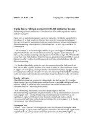 Vigtig dansk rolle på marked til 100-200 milliarder kroner