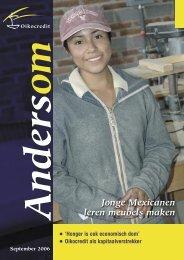 Jonge Mexicanen leren meubels maken - Oikocredit