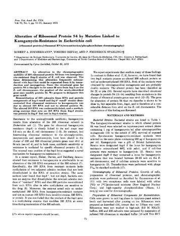 Kasugamycin-Resistance in Escherichia coli