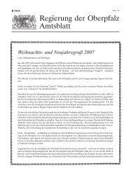Amtsblatt der Regierung der Oberpfalz Nr. 22/17. Dezember 2007
