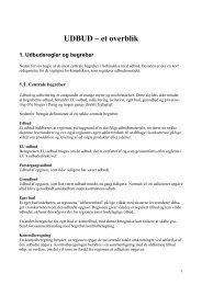 UDBUD et overblik.pdf