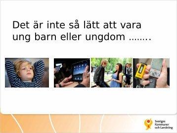 Ing-Marie Wieselgren, Projektledare P-Synk, SKL