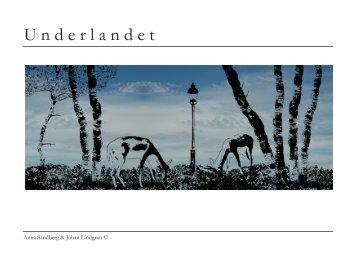 Underlandet - Norrbottens läns landsting