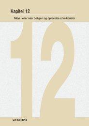 Kapitel 12 - Statens Institut for Folkesundhed