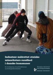 Indsatser målrettet etniske minoriteters sundhed i danske kommuner