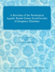 A Revision of the Neotropical Aquatic Beetle Genus Stenhelmoides ...