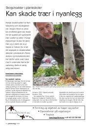 Kan skade trær i nyanlegg - Skog og landskap