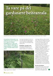 Ta vare på dei gardsnære beiteareala - Skog og landskap