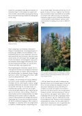 3 effekter av klimaendringer på skogens ... - Skog og landskap - Page 2