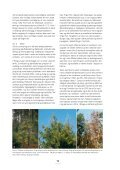 3 effekter av klimaendringer på skogens ... - Skog og landskap - Page 4