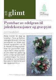 Pyntebar av edelgran til jule dekorasjoner og ... - Skog og landskap