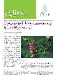 Epigenetisk hukommelse og klimatilpasning - Skog og landskap
