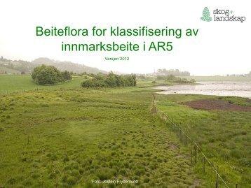 Beiteflora for klassifisering av innmarksbeite i AR5 - Skog og landskap