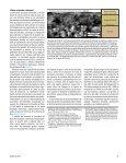 Empaques de grava en pozos horizontales de alta ... - Schlumberger - Page 4