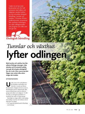 Winter C 2012 Tunnlar och växthus lyfter odlingen Viola 2, 33 ... - SLU