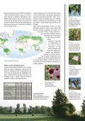 Grøn klimakamp - DMI - Page 3