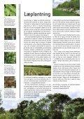 Grøn klimakamp - DMI - Page 4