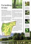 Grøn klimakamp - DMI - Page 7