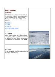 Havisleksikon som pdf - DMI