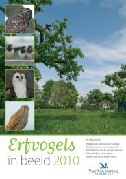 downloaden - Vogelbescherming Nederland