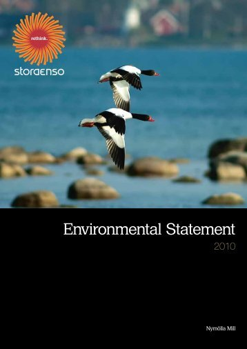 Environmental Statement - Stora Enso