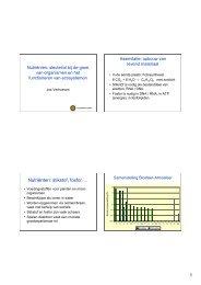 Presentatie Nutriënten, sleutelrol bij de groei van ... - Stowa