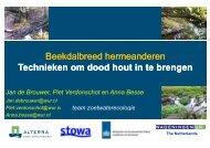 Technieken om dood hout in de brengen-Jan de Brouwer - Stowa