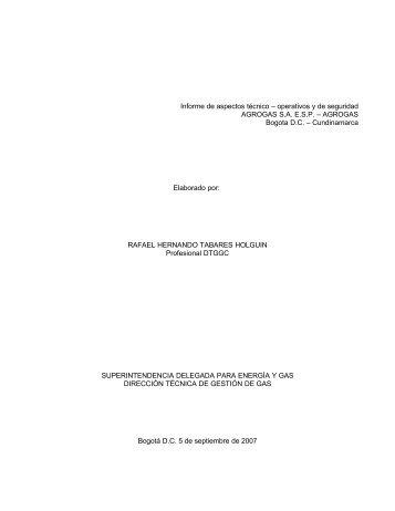Informe de aspectos técnico – operativos y de seguridad AGROGAS ...