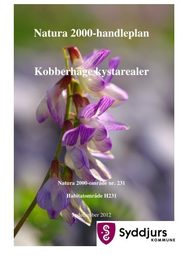Handleplan Kobberhage med kystarealer.pdf - Syddjurs Kommune