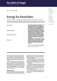 Fra rådet til tinget nr. 245: Energi for fremtiden - Teknologirådet