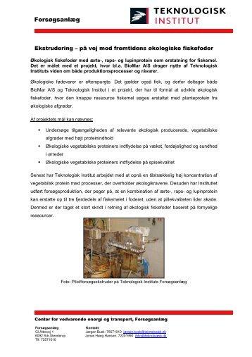 økologisk fiskefoder med vegetabilsk protein - Teknologisk Institut