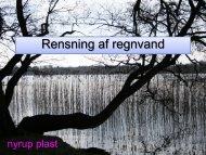 Rensning af regnvand