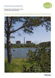 Program för miljökonsekvensbedömning sammanfattning