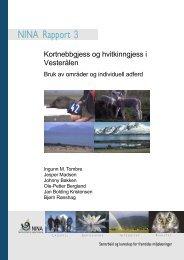 Kortnebbgjess og hvitkinngjess i Vesterålen - NINA