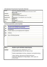 1yz bkC - Anne Næsdorf.pdf - Thisted Gymnasium og HF-Kursus