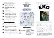 09 EKG Flyer 2.11.2. AV-Block I. Grades Hund - Tierarzt Dr. Rudolf ...