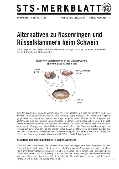 Alternativen zu Nasenringen und Rüsselklammern beim Schwein
