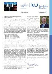 Wirtschaft Informationen Januar 2010 - Landkreis Neu-Ulm