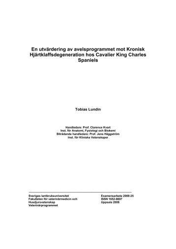 En utvärdering av avelsprogrammet mot Kronisk ... - Epsilon - SLU