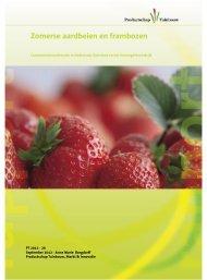 Zomerse aardbeien en frambozen - Productschap Tuinbouw