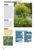 T&L Thema: De eetbare tuin 13a/2010 - Tuin & Landschap - Page 6