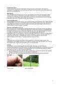 Teken, tekenbeten en de ziekte van Lyme in de ... - Tuin & Landschap - Page 6