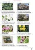 T&L Thema: Magnolia 11a/2009 - Tuin & Landschap - Page 3