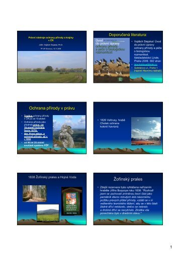 Ochrana přírody v právu Žofínský prales