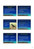 Ochrana přírody v právu Žofínský prales - Page 6