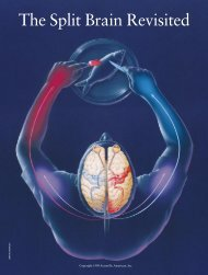 The Split Brain Revisited - The University of Texas at Dallas