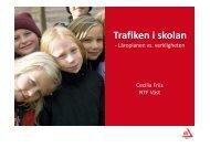 Trafiken i skolan - läroplanen vs. verkligheten. (517 KB) - NTF