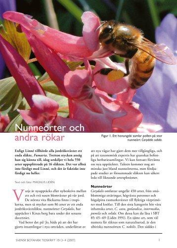 Nunneörter och andra rökar - Svenska Botaniska Föreningen